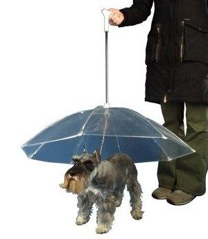 Regenschirm für Hunde
