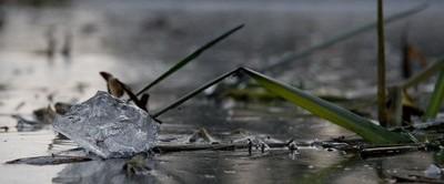 100% Natur Eiswürfel