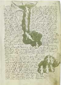eine Seite des Voynich Manuskript