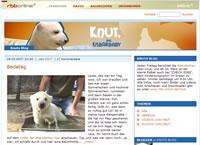 zu Knuts Blog