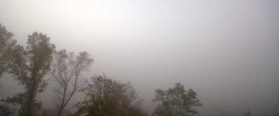 morgens noch grau in grau