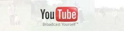 zu Youtube und Hundevideos