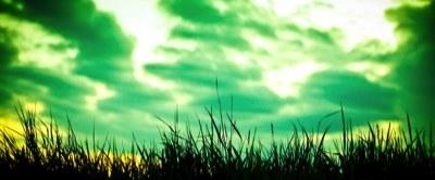 Grünes Gewitter