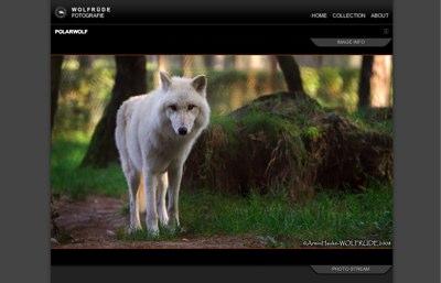 wolfruede.de
