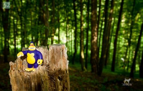 Projekt 52/24: Ein Herbert steht im Walde …