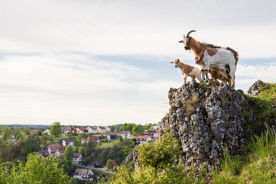 alpines Feeling über Pottenstein