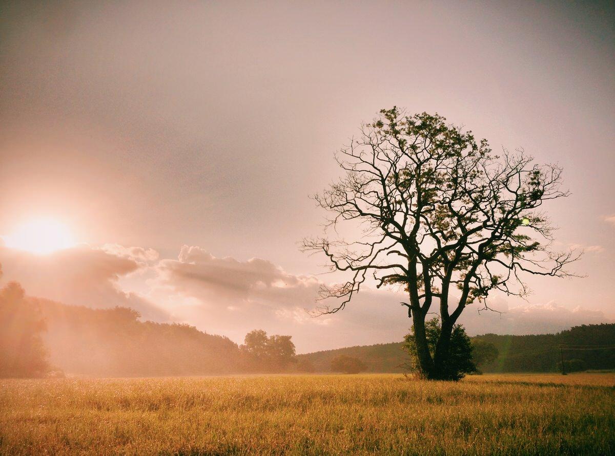 iPhone Geknipse - Sonnenaufgang